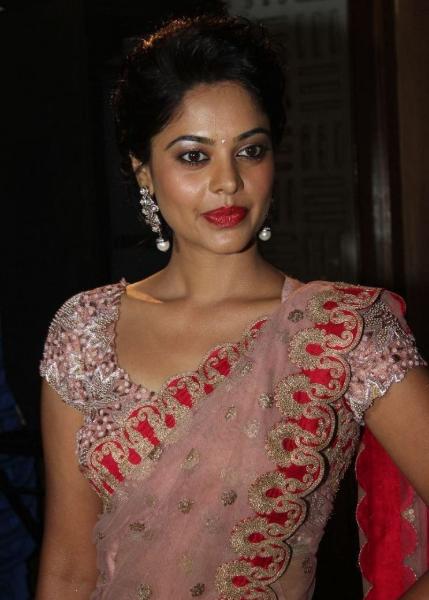 Bindu-Madhavi-In- netted Saree