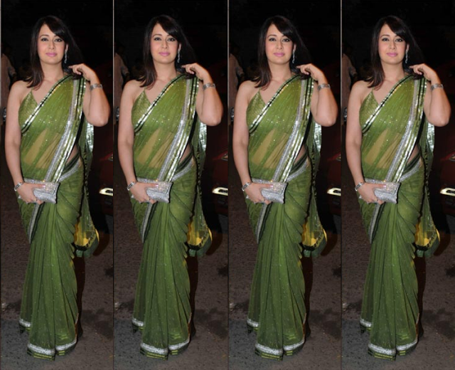preeti+zingania in netted saree
