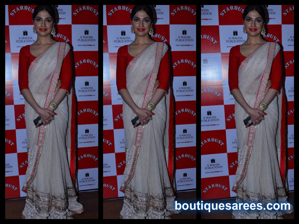 Divya Khosla in mirror saree blouse
