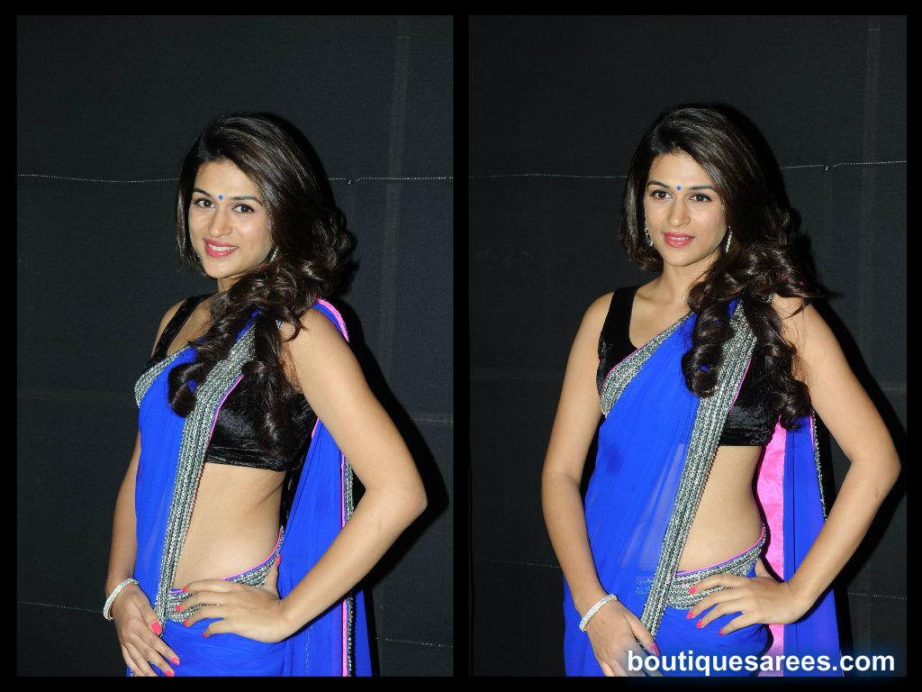Shradda Das in plain saree blouse