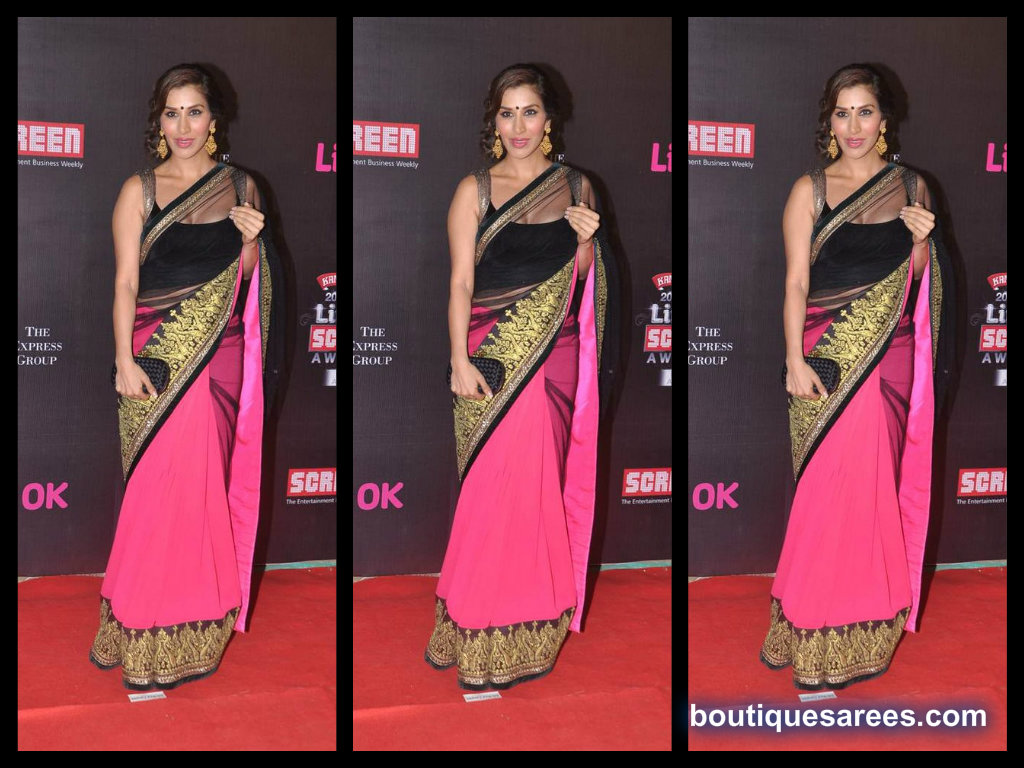 Sophie choudry  in half and half saree