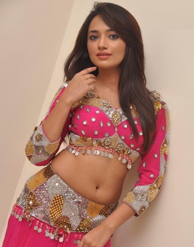 ziya in full sleeves saree blouse