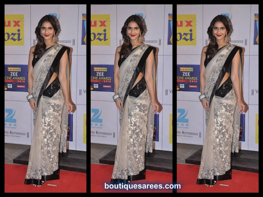 Vaani Kapoor At Zee Cine Awards 2014 in varun bhal
