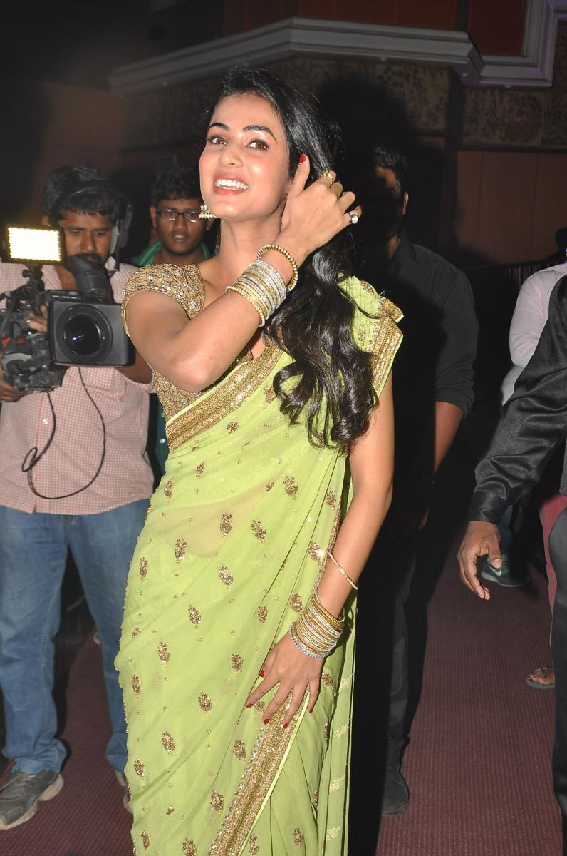 Sonal Chauhan in embroidery saree