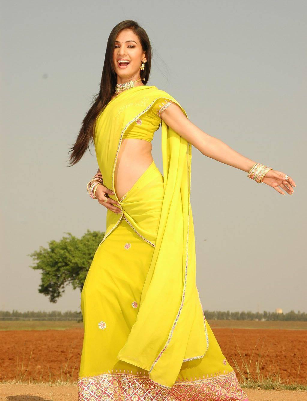 Sonal Chauhan half sari