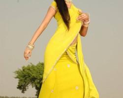 Sonal Chauhan in half saree