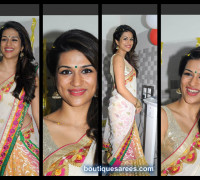 Shradda Das in Half and Half Saree designer