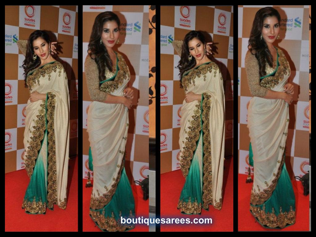 sophie-choudry in vikram phadnis half and half saree