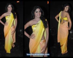 Pooja Sawant in plain saree