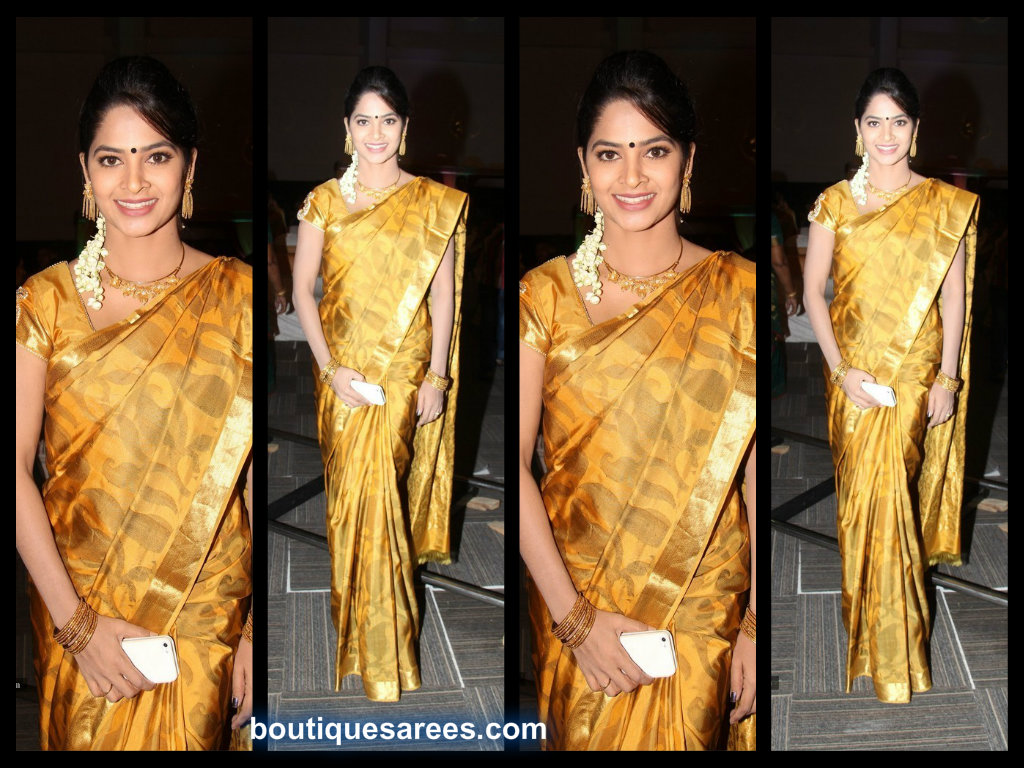 swapna madhuri in silk saree
