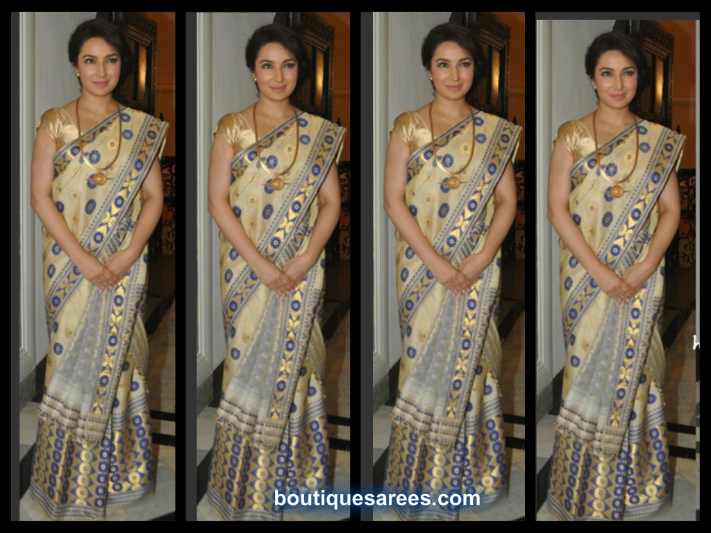 tisca chopra in designer saree