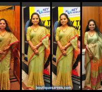 kavitha in silk saree