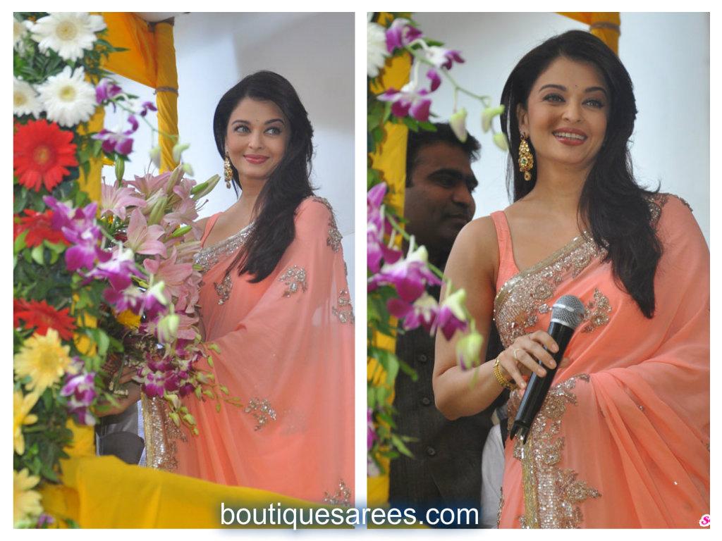 aish in sari
