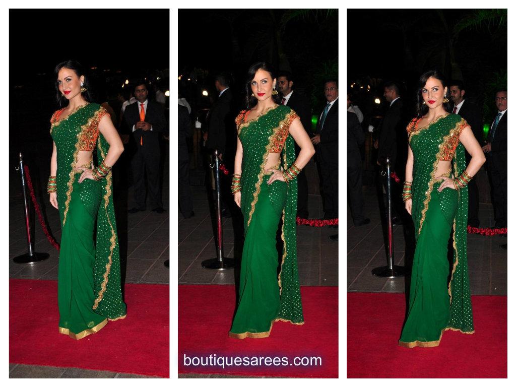 evlyn shrama in green saree
