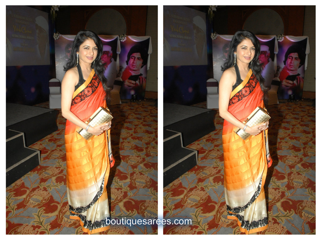 bhagya sri in tri color saree