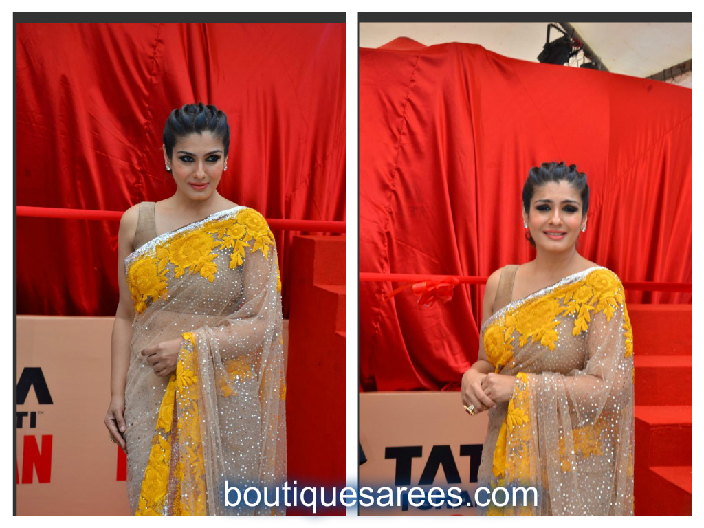 raveena in net saree