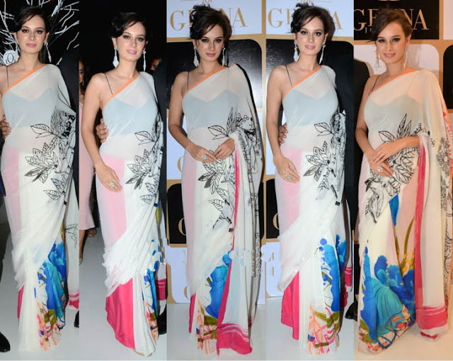 evelyn sharma in white saree