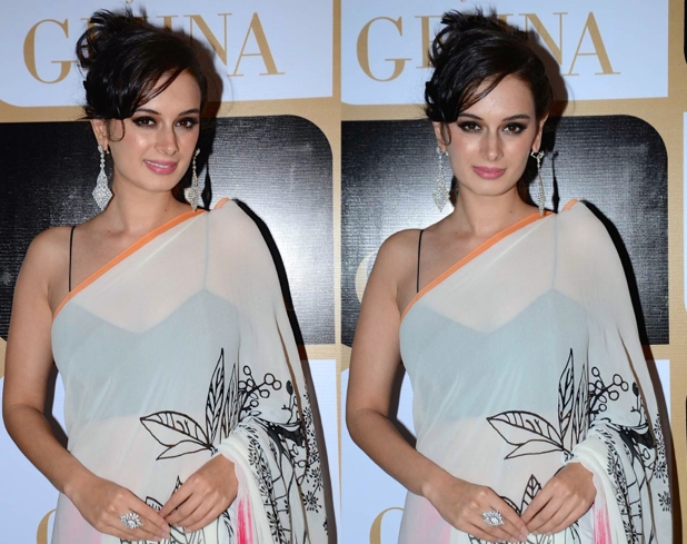 evelyn sharma in white sari blouse