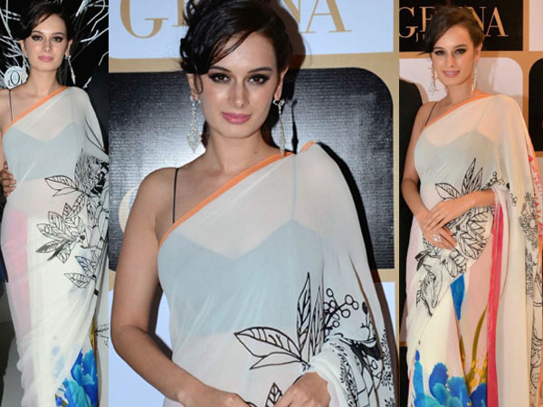 evelyn sharma in white sari