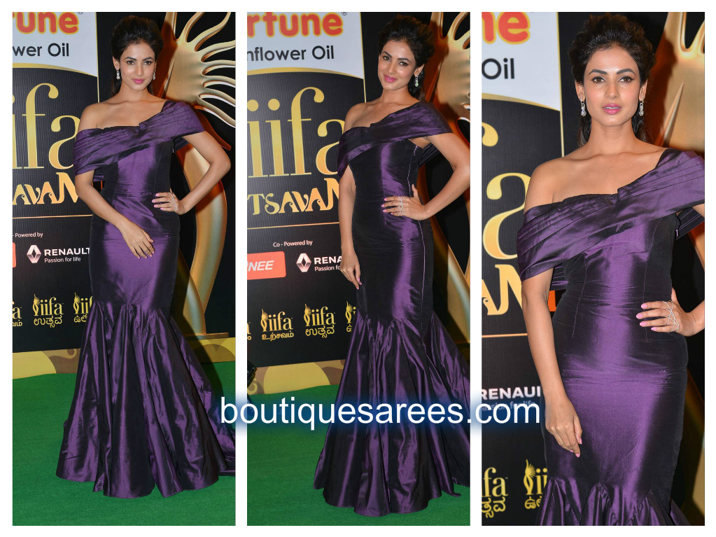 Sonal Chauhan in long dress