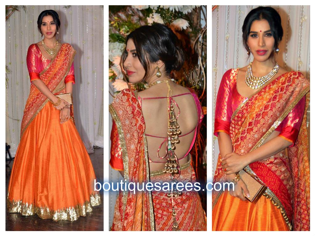 Sophie Choudry in manish malhotra half saree