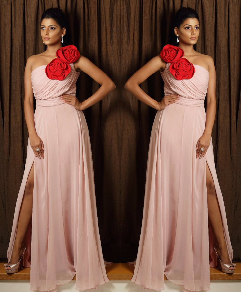 anisha ambrose long gown
