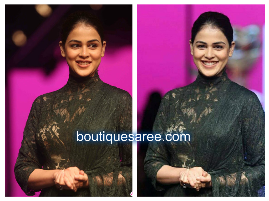Genelia D'Souza in shantanu and nikhil