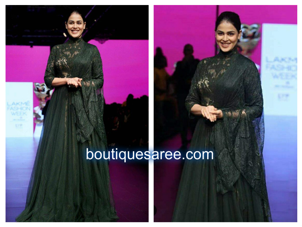 Genelia D'Souza in shantanu and nikhils
