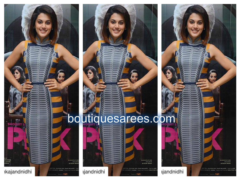 tapsee-in-pankaj-and-nidhi
