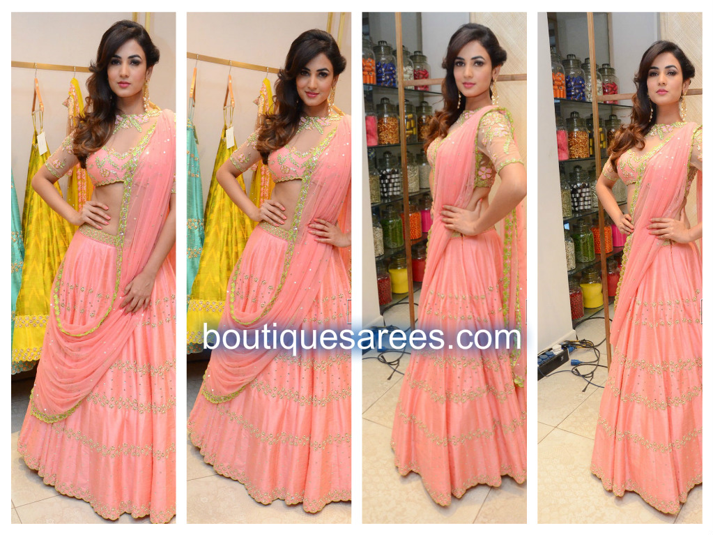 sonal-chauhan-in-pink-half-saree